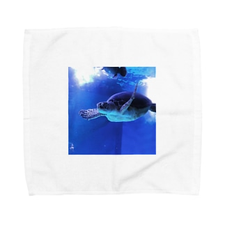 海亀 Towel handkerchiefs