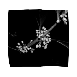 黒金木犀 Towel handkerchiefs