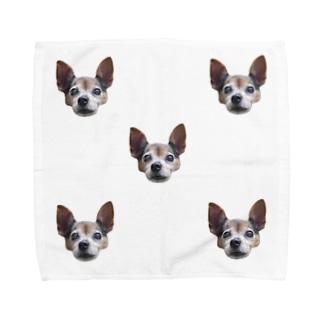 じっとしてるいぬいっぱい Towel handkerchiefs