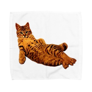 Elegant Cat 2 Towel handkerchiefs