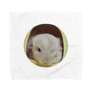 ハル坊 Towel handkerchiefs