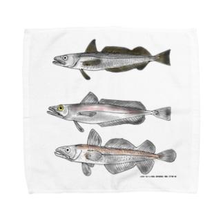 3匹のメルルーサ Towel handkerchiefs