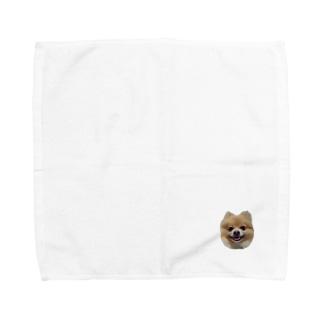 ポメラニアンのランディー ハンカチ Towel handkerchiefs