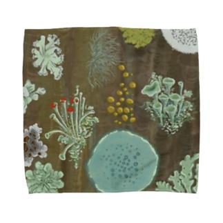 地衣類の祭り Towel handkerchiefs