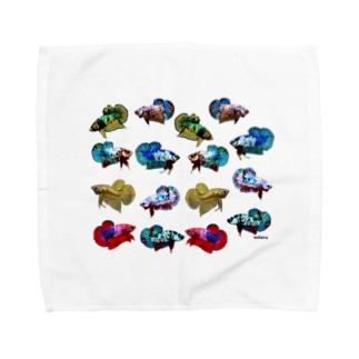 ショーベタ プラカット Towel handkerchiefs