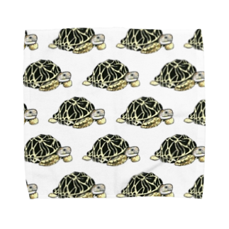 Leee_sanのインドホシガメ Towel handkerchiefs