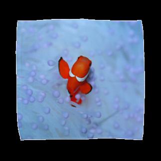 龍舞堂のカクレクマノミ Towel handkerchiefs