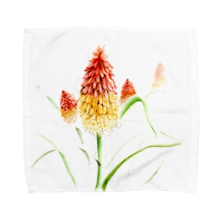 トリトマ Towel handkerchiefs