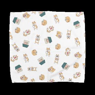 みずしな孝之の店 しなやのタオルハンカチ Towel handkerchiefs