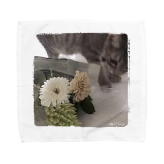 子猫とお花。 Towel handkerchiefs