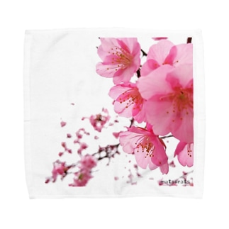 かわづさくら Towel handkerchiefs