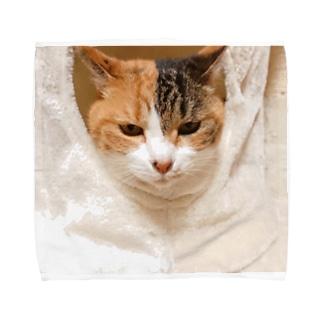 モモたそグッズ第2弾!! Towel handkerchiefs