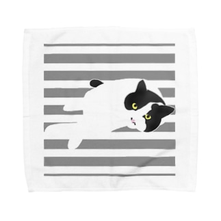クール猫 Towel handkerchiefs