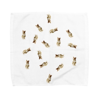 ねこ(どうしたの?)いっぱい Towel handkerchiefs