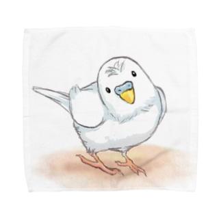 セキセイインコ レティ【まめるりはことり】 Towel handkerchiefs
