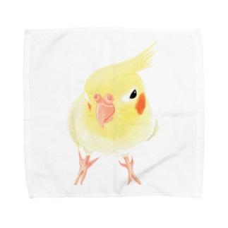 オカメインコ おすましルチノー【まめるりはことり】 Towel handkerchiefs