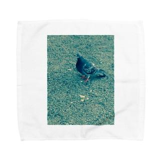 蒼い鳩 タオルハンカチ