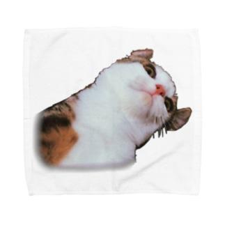 むー❕ Towel handkerchiefs