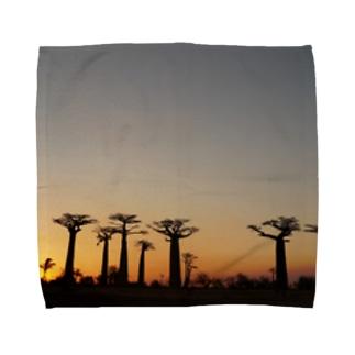 バオバブの並木 Towel handkerchiefs