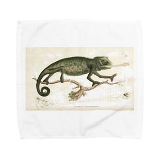 カメレオン Towel handkerchiefs