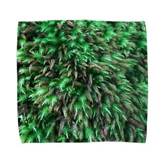 店ショップのモスモス Towel handkerchiefs