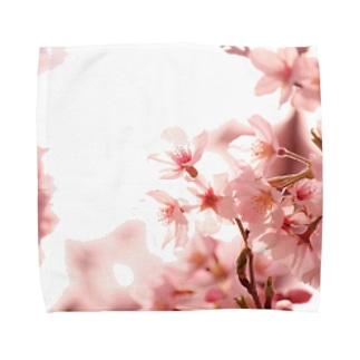 薄桜 Towel handkerchiefs