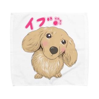 麗しの愛し子『イブ』🐾 Towel handkerchiefs