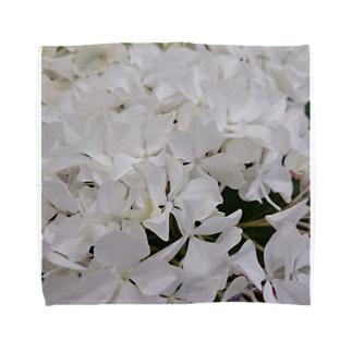 紫陽花(白) Towel handkerchiefs