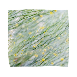 bubble Towel handkerchiefs