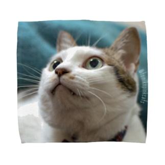 かわいいねわむちゃん Towel handkerchiefs