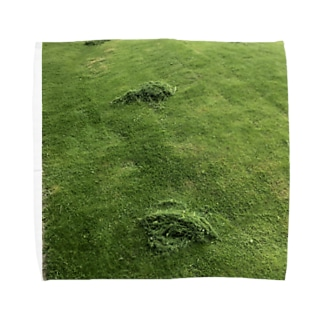 刈った芝生のタオルハンカチ Towel handkerchiefs