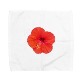 ハイビスカス・レッド① Towel handkerchiefs
