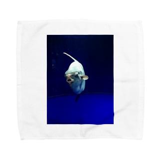 マンボウさん Towel handkerchiefs