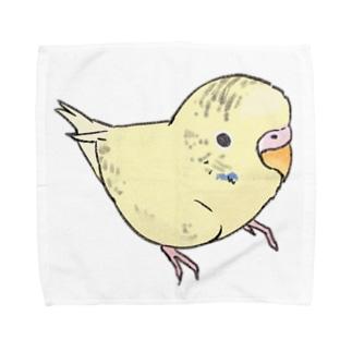 可愛いセキセイインコ おすましちゃん【まめるりはことり】 Towel handkerchiefs