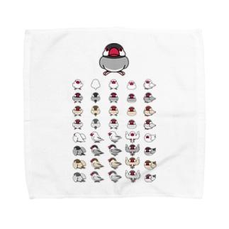 整列文鳥隊【まめるりはことり】 Towel handkerchiefs