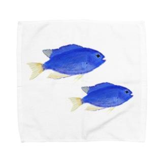 青い魚のソラスズメダイ Towel handkerchiefs