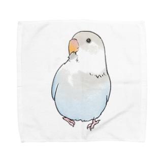 まめるりはことりのおすましコザクラインコ らむねちゃん【まめるりはことり】 Towel handkerchiefs