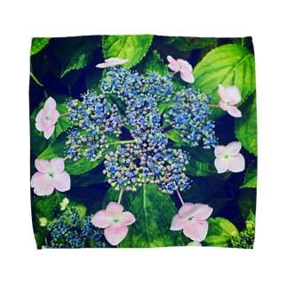 ガクアジサイ Towel handkerchiefs