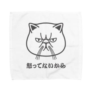 エキゾチックショートヘア「怒ってないから」 Towel handkerchiefs