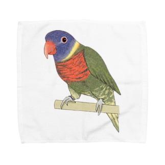 色合いが綺麗なゴシキセイガイインコちゃん【まめるりはことり】 Towel handkerchiefs