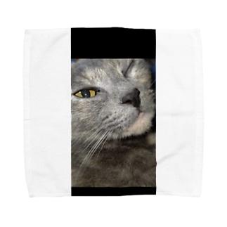ウィンク猫 Towel handkerchiefs