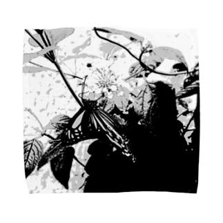 アオスジアゲハ Towel handkerchiefs