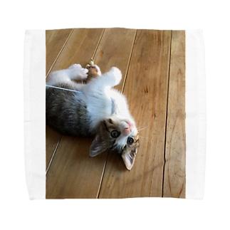 にゃにゃすけ Towel handkerchiefs