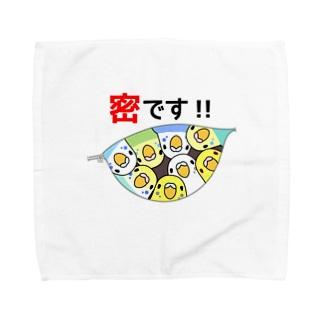 密です!セキセイインコさん【まめるりはことり】 Towel handkerchiefs