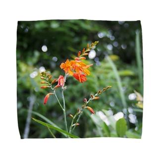 一輪の花 タオルハンカチ