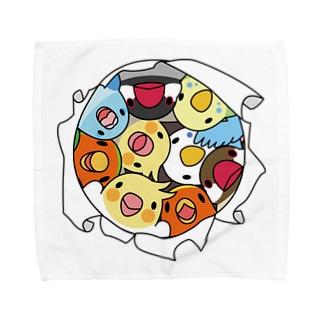 三密です!むちむち鳥まみれ【まめるりはことり】 Towel handkerchiefs