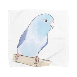 おしゃまなマメルリハのるりちゃん【まめるりはことり】 Towel Handkerchief