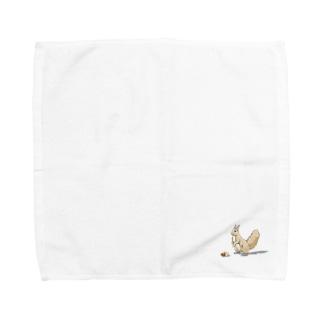 見本林のエゾリス Towel handkerchiefs
