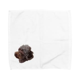 昴くん Towel handkerchiefs
