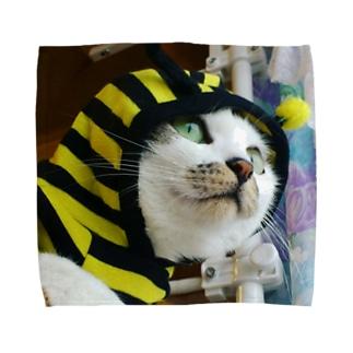みつばちネコのロッキーちゃん Towel handkerchiefs